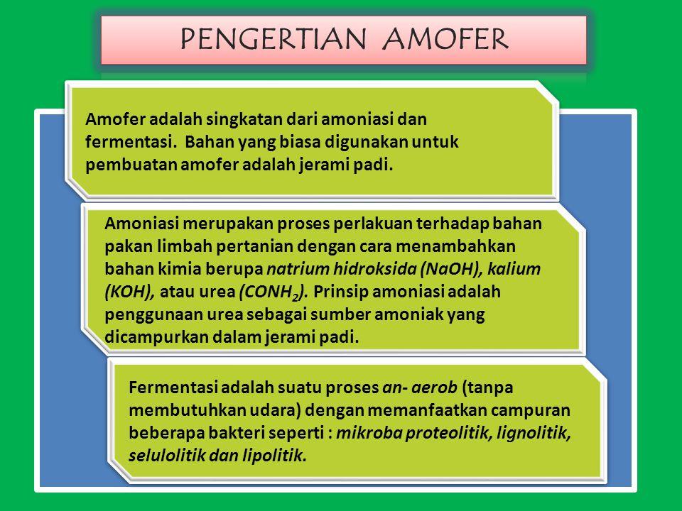 Amofer adalah singkatan dari amoniasi dan fermentasi.
