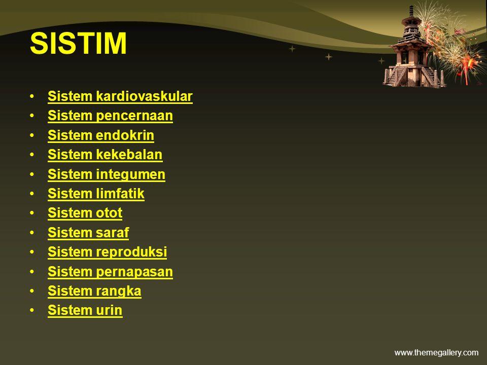 www.themegallery.com SISTIM Sistem kardiovaskular Sistem pencernaan Sistem endokrin Sistem kekebalan Sistem integumen Sistem limfatik Sistem otot Sist
