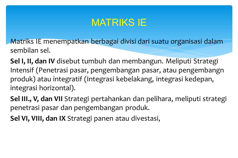 Contoh Matriks BCG