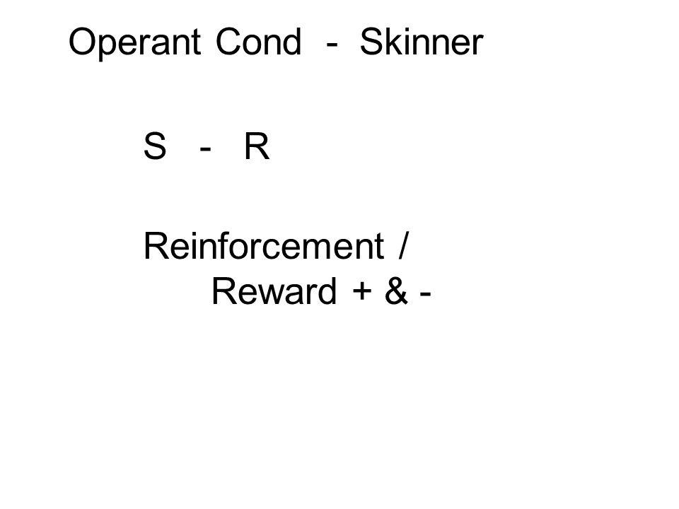 Operant Cond - Skinner S - R Reinforcement / Reward + & -