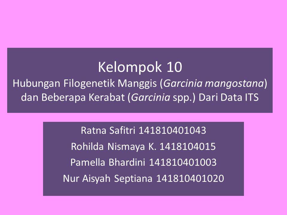Kelompok 10 Hubungan Filogenetik Manggis (Garcinia mangostana) dan Beberapa Kerabat (Garcinia spp.) Dari Data ITS Ratna Safitri 141810401043 Rohilda Nismaya K.