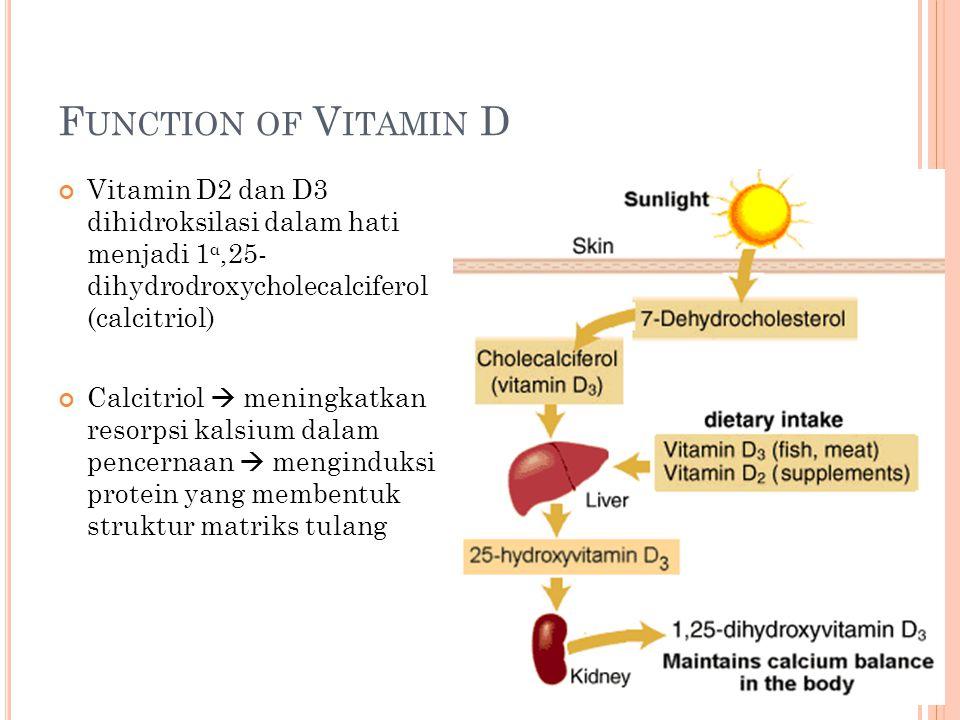 F UNCTION OF V ITAMIN D Vitamin D2 dan D3 dihidroksilasi dalam hati menjadi 1 α,25- dihydrodroxycholecalciferol (calcitriol) Calcitriol  meningkatkan