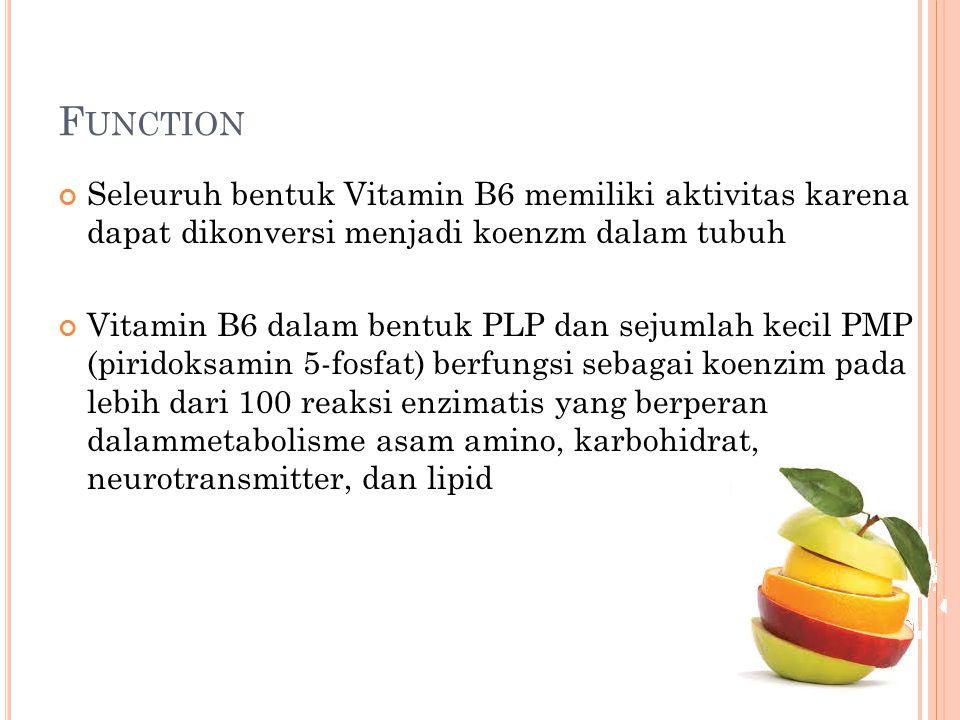 F UNCTION Seleuruh bentuk Vitamin B6 memiliki aktivitas karena dapat dikonversi menjadi koenzm dalam tubuh Vitamin B6 dalam bentuk PLP dan sejumlah ke