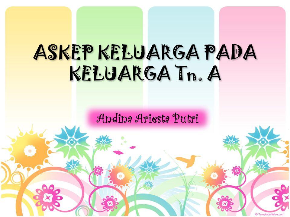 Pola komunikasi keluarga dilakukan secara terbuka, bahasa yang dipakai sehari – adalah minang dan kadang – kadang bahasa Indonesia.