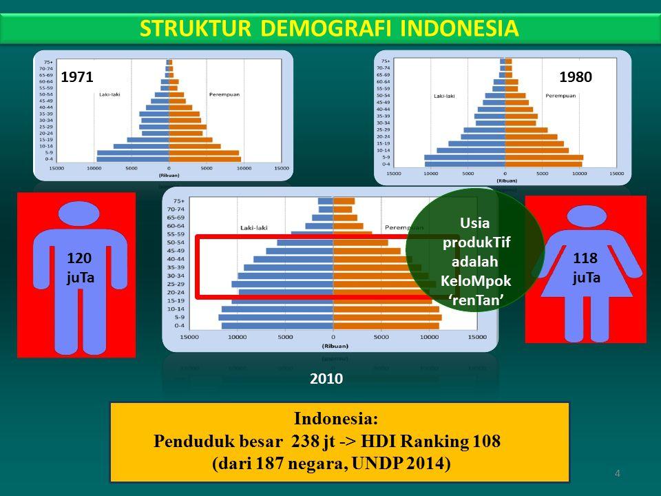 1971 1980 120 juTa 118 juTa STRUKTUR DEMOGRAFI INDONESIA Usia produkTif adalah KeloMpok 'renTan' 2010 Indonesia: Penduduk besar 238 jt -> HDI Ranking