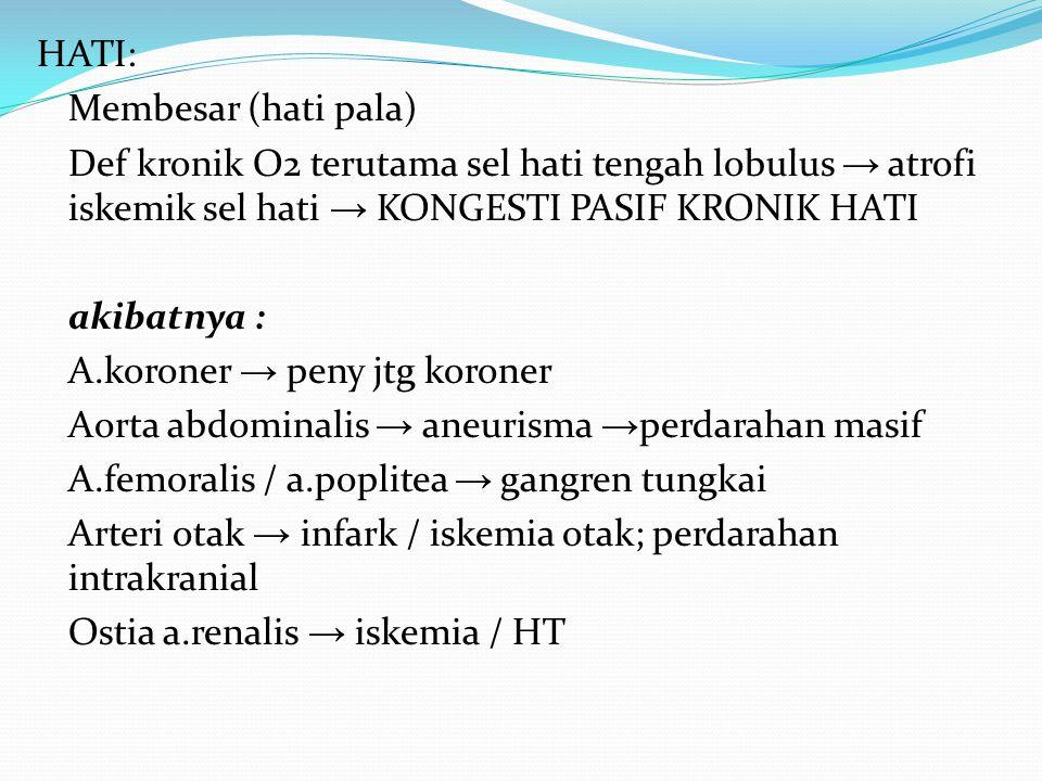 HATI: Membesar (hati pala) Def kronik O2 terutama sel hati tengah lobulus → atrofi iskemik sel hati → KONGESTI PASIF KRONIK HATI akibatnya : A.koroner