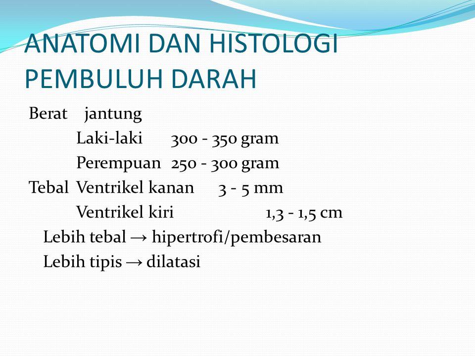 ANATOMI DAN HISTOLOGI PEMBULUH DARAH Berat jantung Laki-laki 300 - 350 gram Perempuan250 - 300 gram TebalVentrikel kanan3 - 5 mm Ventrikel kiri1,3 - 1