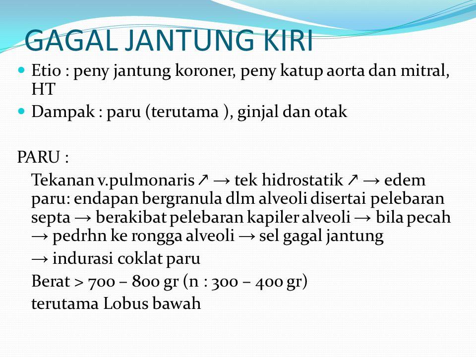 GINJAL : pe(-)an curah jantung  pengaktifan saraf simpatis dan sistem renin-angiotensin → vasokonstriksi arteriol → filtrasi glomerolus ber(-)  pe ↗ an reabsorpsi tubuli proximal → retensi air dan garam diperberat pe(+)an sekresi aldosteron → EDEM OTAK: hipoksia dg beberpara gejala → KOMA