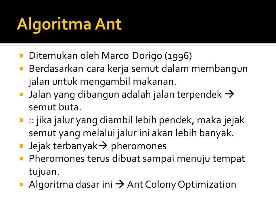  Ditemukan oleh Marco Dorigo (1996)  Berdasarkan cara kerja semut dalam membangun jalan untuk mengambil makanan.  Jalan yang dibangun adalah jalan