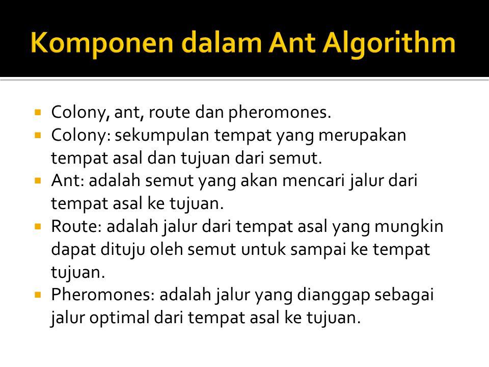  Colony, ant, route dan pheromones.  Colony: sekumpulan tempat yang merupakan tempat asal dan tujuan dari semut.  Ant: adalah semut yang akan menca