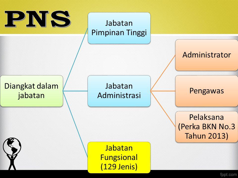 Diangkat dalam jabatan Jabatan Pimpinan Tinggi Jabatan Administrasi AdministratorPengawas Pelaksana (Perka BKN No.3 Tahun 2013) Jabatan Fungsional (12