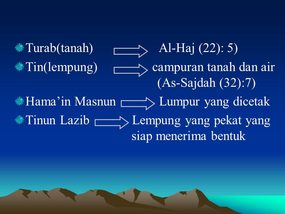 Turab(tanah) Al-Haj (22): 5) Tin(lempung) campuran tanah dan air (As-Sajdah (32):7) Hama'in Masnun Lumpur yang dicetak Tinun Lazib Lempung yang pekat