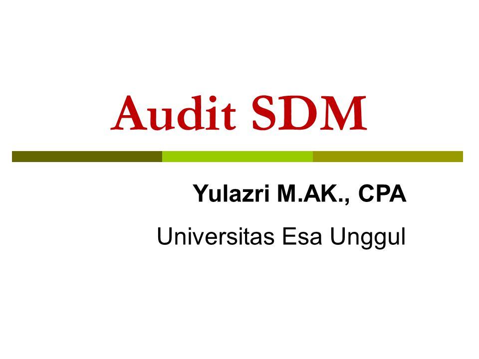 Fungsi SDM Perencanaan dan rekruitment Pemilihan Pelatihan dan pengembangan Penilaian kinerja Kompensasi Hubungan ketenagakerjaan