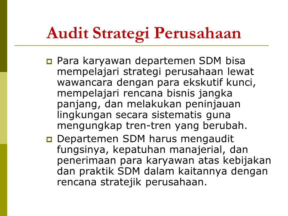 Audit Fungsi SDM  Merupakan penilaian atas berbagai fungsi yang dijalankan departemen SDM.
