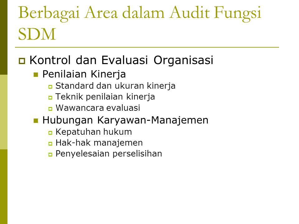 Berbagai Area dalam Audit Fungsi SDM  Kontrol dan Evaluasi Organisasi Penilaian Kinerja  Standard dan ukuran kinerja  Teknik penilaian kinerja  Wa