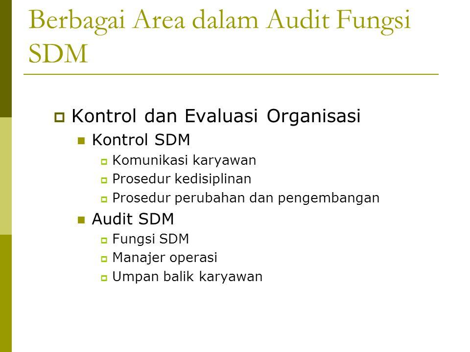 Berbagai Area dalam Audit Fungsi SDM  Kontrol dan Evaluasi Organisasi Kontrol SDM  Komunikasi karyawan  Prosedur kedisiplinan  Prosedur perubahan