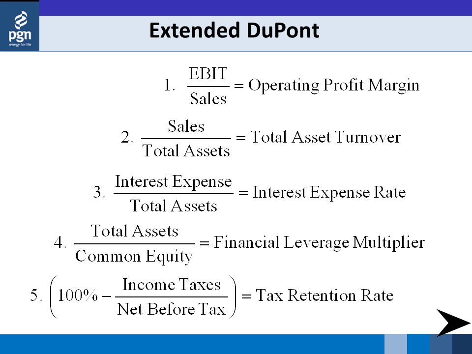 Extended DuPont