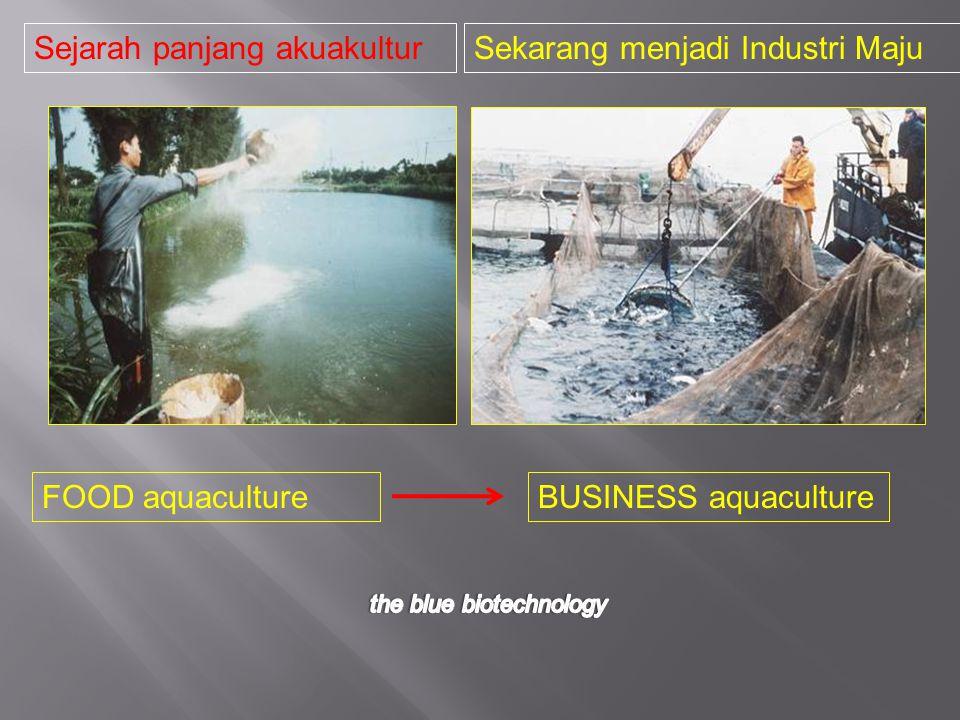 FOOD aquacultureBUSINESS aquaculture Sejarah panjang akuakulturSekarang menjadi Industri Maju