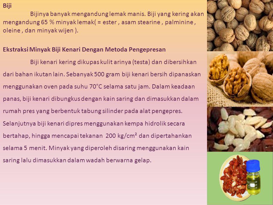 Biji Bijinya banyak mengandung lemak manis. Biji yang kering akan mengandung 65 % minyak lemak( = ester, asam stearine, palminine, oleine, dan minyak