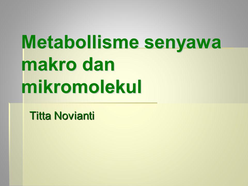 Metabollisme senyawa makro dan mikromolekul Titta Novianti