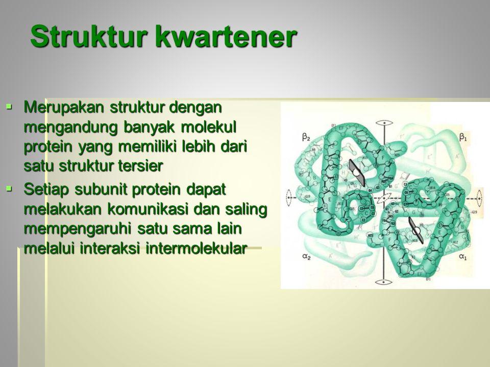 Struktur kwartener  Merupakan struktur dengan mengandung banyak molekul protein yang memiliki lebih dari satu struktur tersier  Setiap subunit protein dapat melakukan komunikasi dan saling mempengaruhi satu sama lain melalui interaksi intermolekular