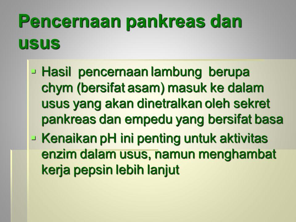 Pencernaan pankreas dan usus  Hasil pencernaan lambung berupa chym (bersifat asam) masuk ke dalam usus yang akan dinetralkan oleh sekret pankreas dan