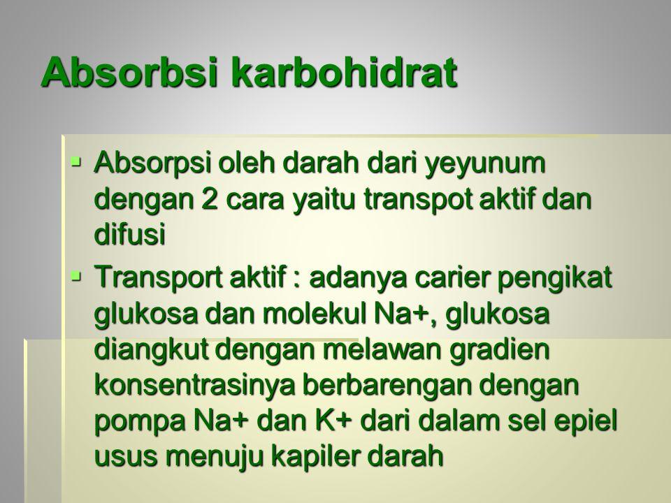 Absorbsi karbohidrat  Absorpsi oleh darah dari yeyunum dengan 2 cara yaitu transpot aktif dan difusi  Transport aktif : adanya carier pengikat glukosa dan molekul Na+, glukosa diangkut dengan melawan gradien konsentrasinya berbarengan dengan pompa Na+ dan K+ dari dalam sel epiel usus menuju kapiler darah