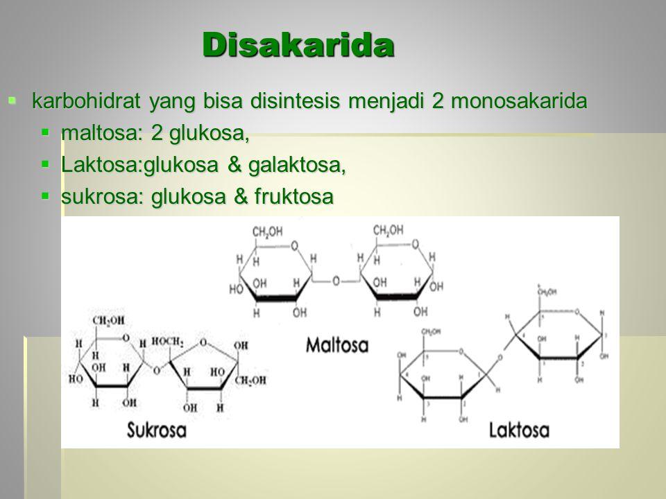 Disakarida  karbohidrat yang bisa disintesis menjadi 2 monosakarida  maltosa: 2 glukosa,  Laktosa:glukosa & galaktosa,  sukrosa: glukosa & fruktos