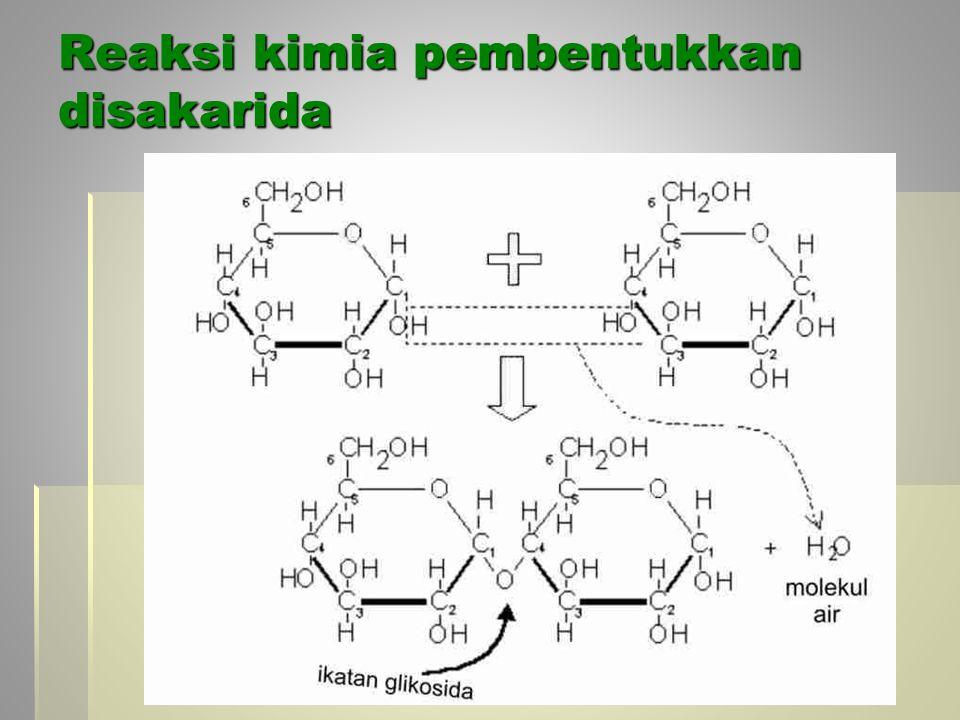 Reaksi kimia pembentukkan disakarida