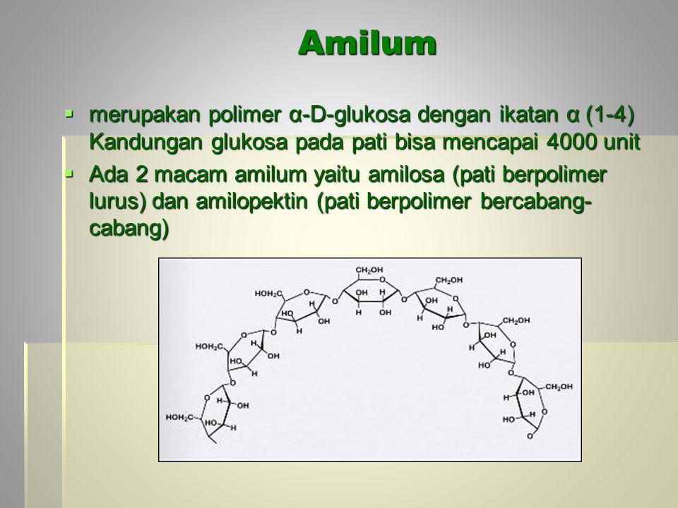 Amilum  merupakan polimer α-D-glukosa dengan ikatan α (1-4) Kandungan glukosa pada pati bisa mencapai 4000 unit  Ada 2 macam amilum yaitu amilosa (pati berpolimer lurus) dan amilopektin (pati berpolimer bercabang- cabang)