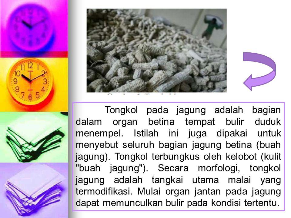 Tongkol pada jagung adalah bagian dalam organ betina tempat bulir duduk menempel. Istilah ini juga dipakai untuk menyebut seluruh bagian jagung betina
