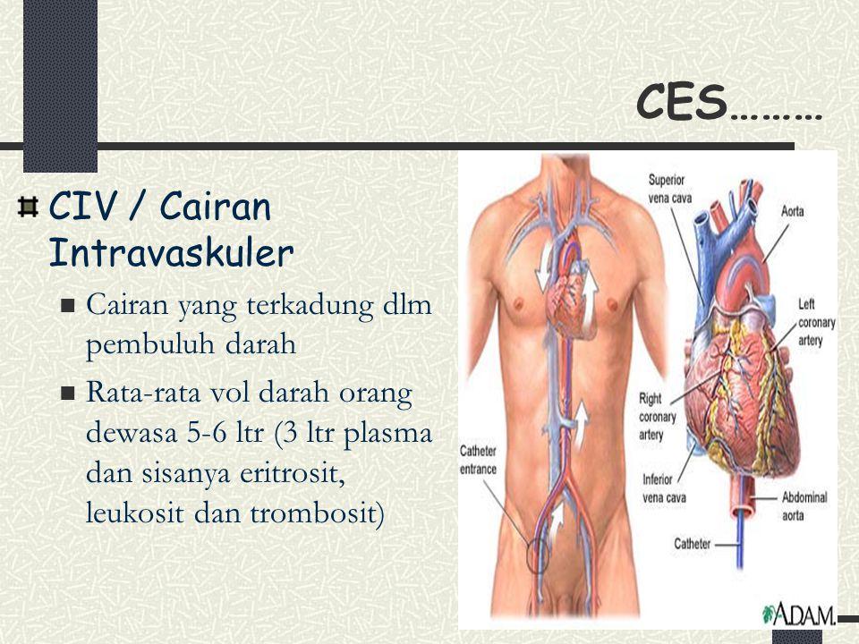 14 CES……… CIV / Cairan Intravaskuler Cairan yang terkadung dlm pembuluh darah Rata-rata vol darah orang dewasa 5-6 ltr (3 ltr plasma dan sisanya eritrosit, leukosit dan trombosit)