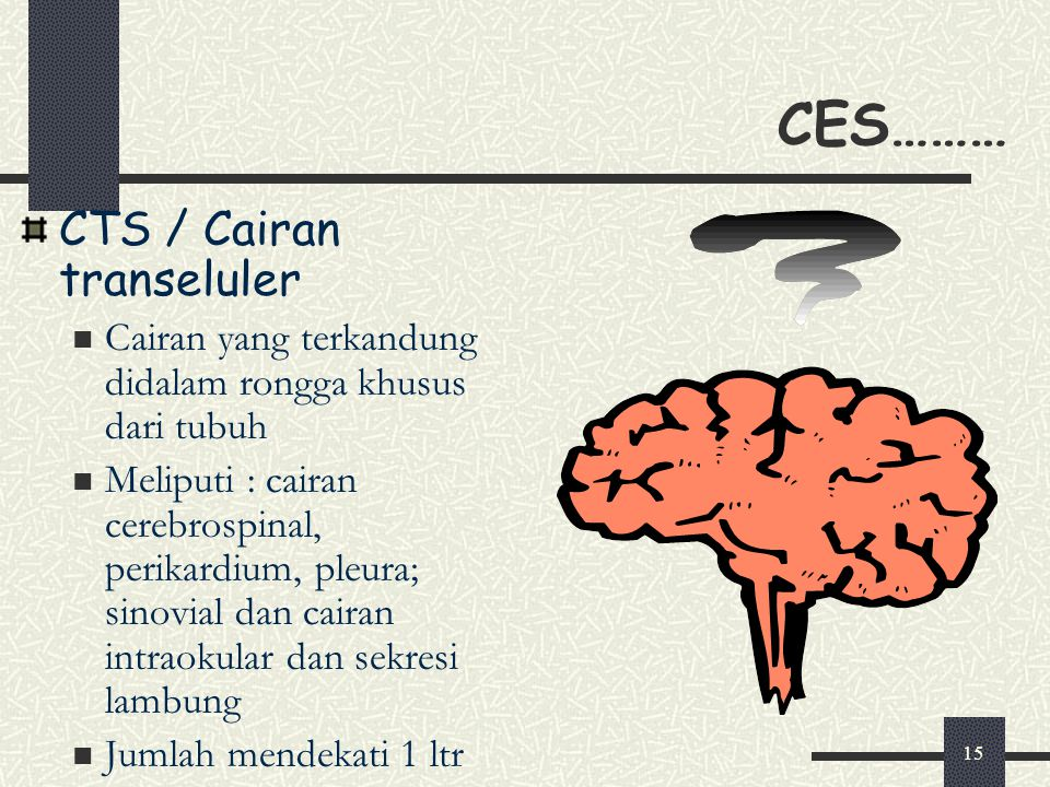 15 CES……… CTS / Cairan transeluler Cairan yang terkandung didalam rongga khusus dari tubuh Meliputi : cairan cerebrospinal, perikardium, pleura; sinov