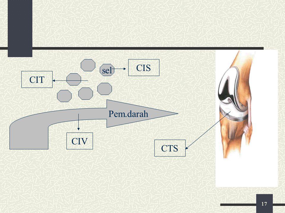 17 sel CIS Pem.darah CIT CIV CTS