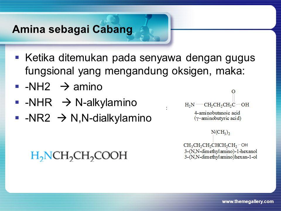 Amina sebagai Cabang  Ketika ditemukan pada senyawa dengan gugus fungsional yang mengandung oksigen, maka:  -NH2  amino  -NHR  N-alkylamino  -NR