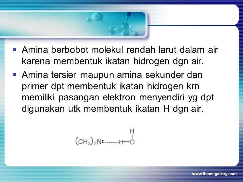  Amina berbobot molekul rendah larut dalam air karena membentuk ikatan hidrogen dgn air.  Amina tersier maupun amina sekunder dan primer dpt membent