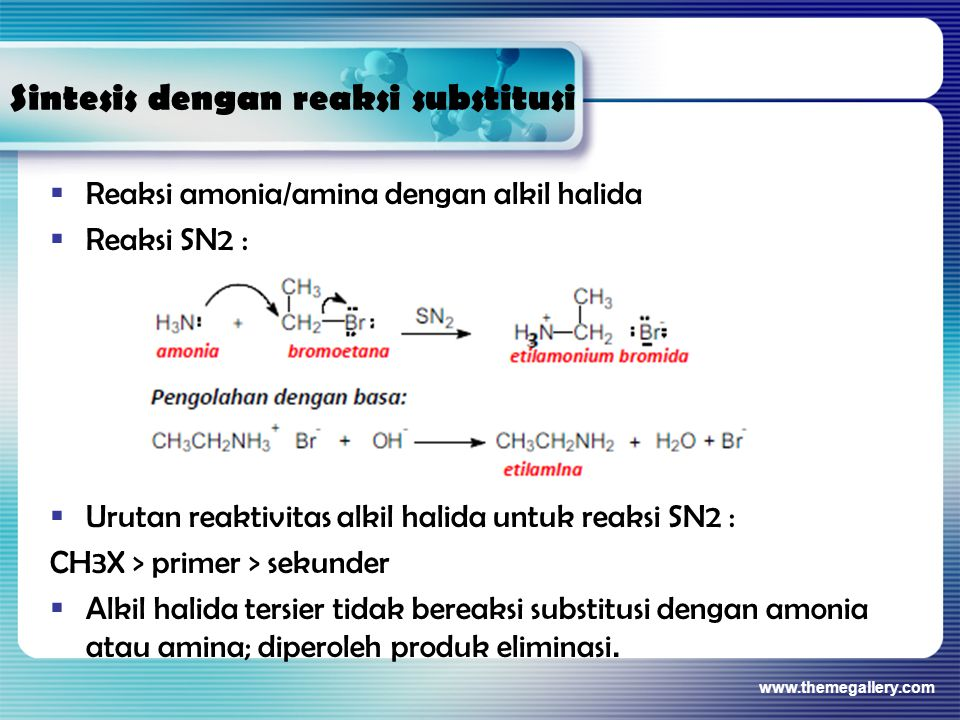 Sintesis dengan reaksi substitusi  Reaksi amonia/amina dengan alkil halida  Reaksi SN2 :  Urutan reaktivitas alkil halida untuk reaksi SN2 : CH3X >