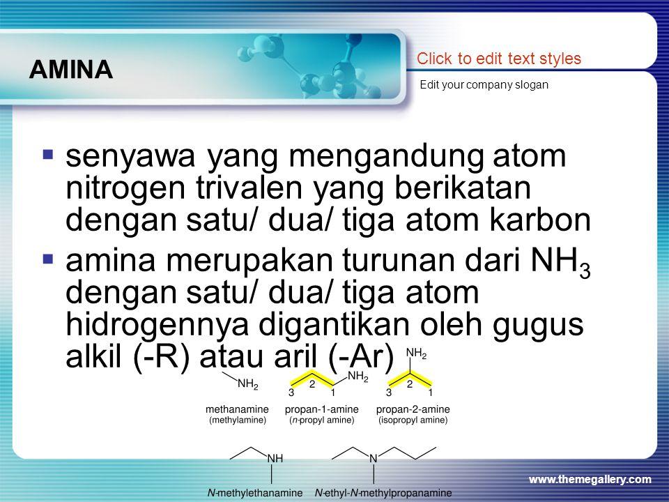 www.themegallery.com AMINA  senyawa yang mengandung atom nitrogen trivalen yang berikatan dengan satu/ dua/ tiga atom karbon  amina merupakan turuna