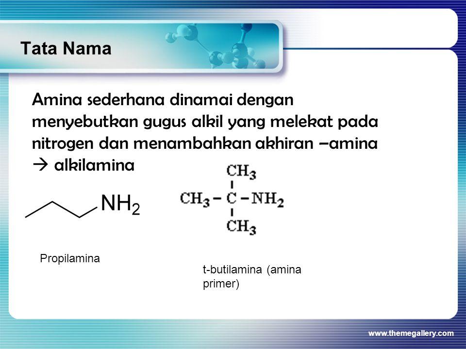Tata Nama www.themegallery.com Amina sederhana dinamai dengan menyebutkan gugus alkil yang melekat pada nitrogen dan menambahkan akhiran –amina  alki