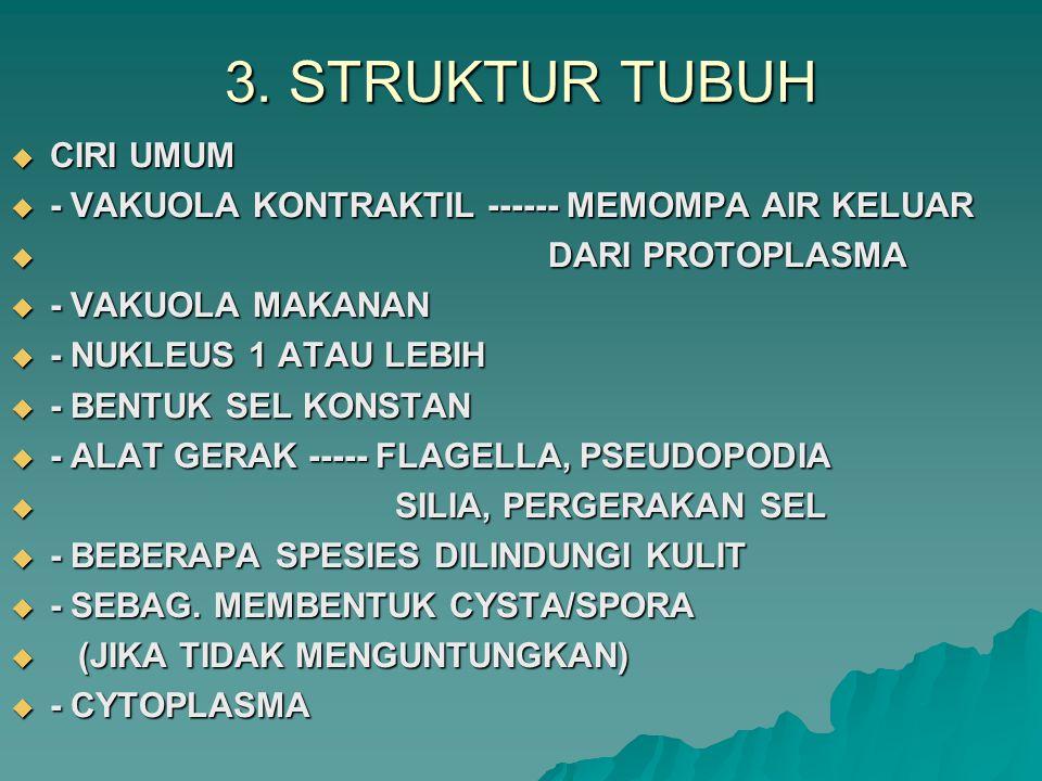 3. STRUKTUR TUBUH  CIRI UMUM  - VAKUOLA KONTRAKTIL ------ MEMOMPA AIR KELUAR  DARI PROTOPLASMA  - VAKUOLA MAKANAN  - NUKLEUS 1 ATAU LEBIH  - BEN