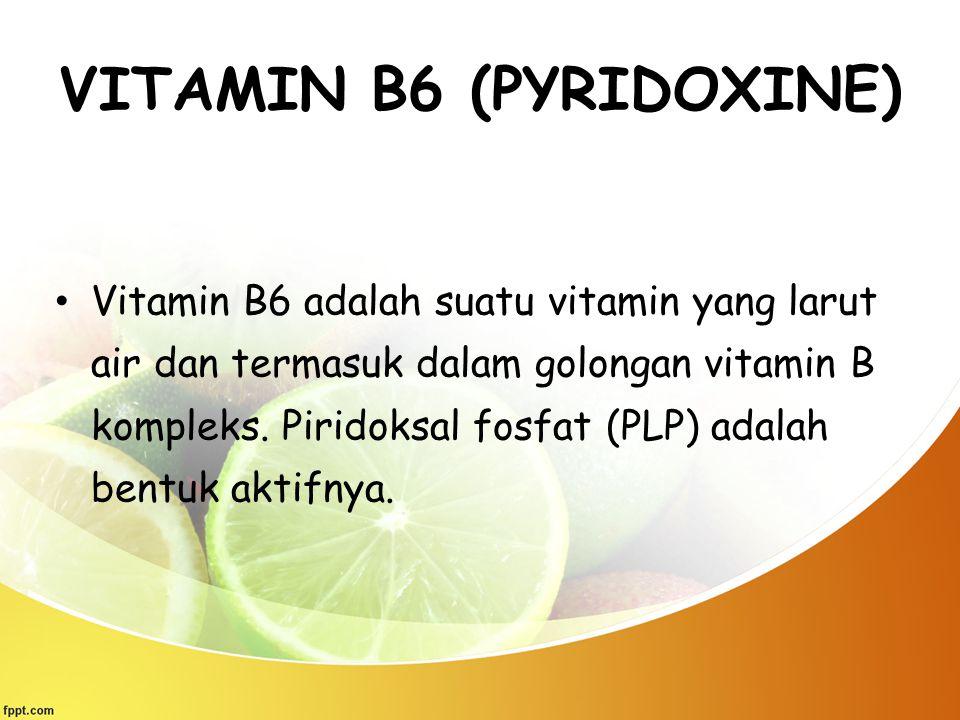 VITAMIN B6 (PYRIDOXINE) Vitamin B6 adalah suatu vitamin yang larut air dan termasuk dalam golongan vitamin B kompleks. Piridoksal fosfat (PLP) adalah