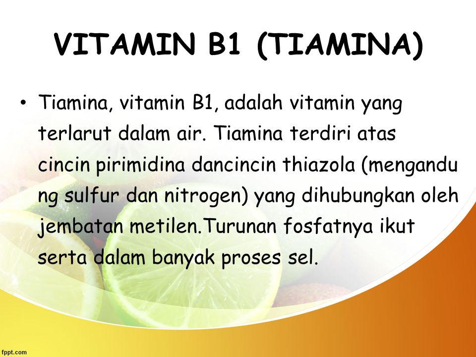 VITAMIN B1 (TIAMINA) Tiamina, vitamin B1, adalah vitamin yang terlarut dalam air. Tiamina terdiri atas cincin pirimidina dancincin thiazola (mengandu