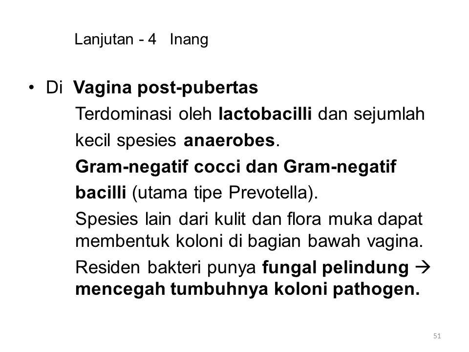 Lanjutan - 4 Inang Di Vagina post-pubertas Terdominasi oleh lactobacilli dan sejumlah kecil spesies anaerobes. Gram-negatif cocci dan Gram-negatif bac