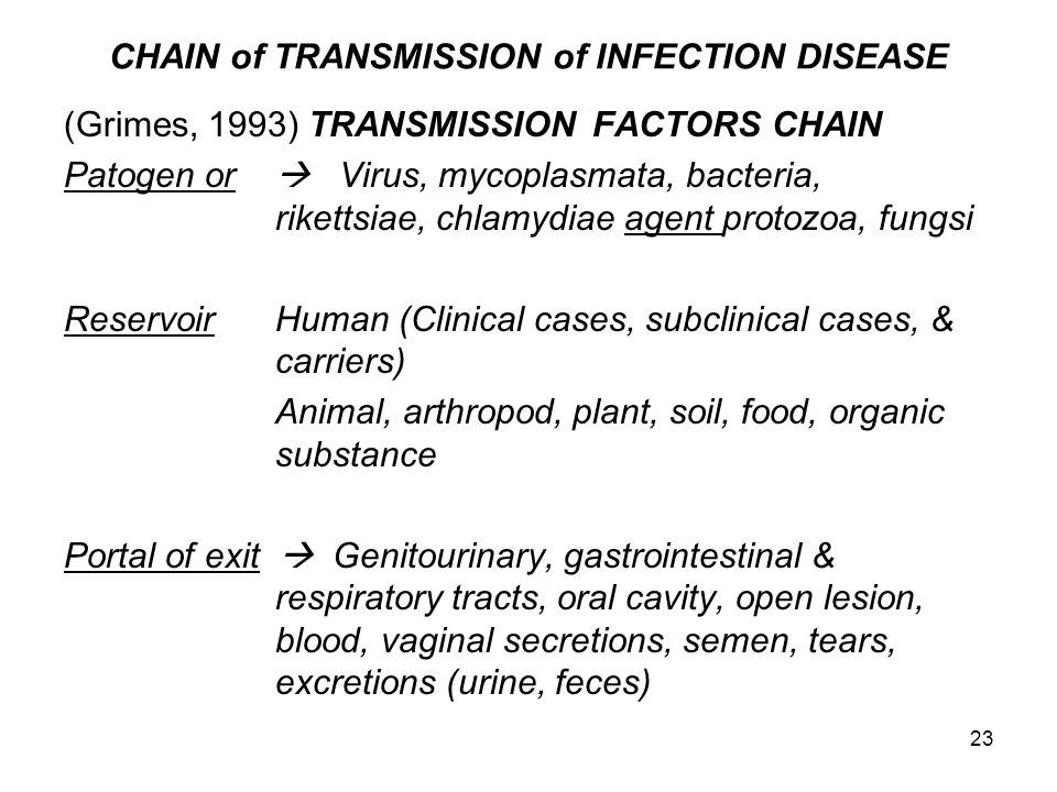 23 CHAIN of TRANSMISSION of INFECTION DISEASE (Grimes, 1993) TRANSMISSIONFACTORS CHAIN Patogen or  Virus, mycoplasmata, bacteria, rikettsiae, chlamyd