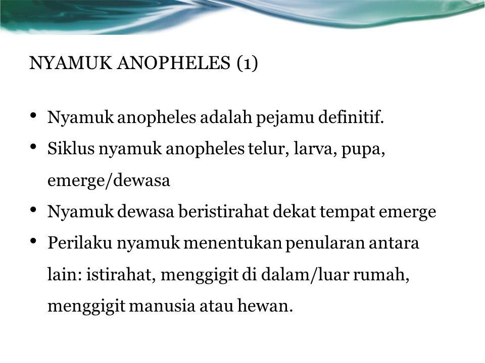 NYAMUK ANOPHELES (1) Nyamuk anopheles adalah pejamu definitif. Siklus nyamuk anopheles telur, larva, pupa, emerge/dewasa Nyamuk dewasa beristirahat de