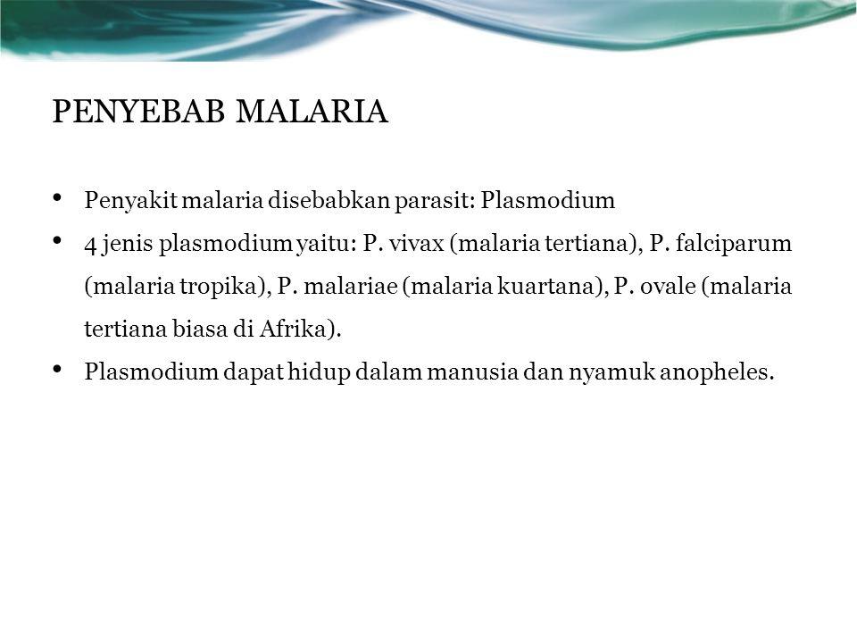 PENYEBAB MALARIA Penyakit malaria disebabkan parasit: Plasmodium 4 jenis plasmodium yaitu: P.