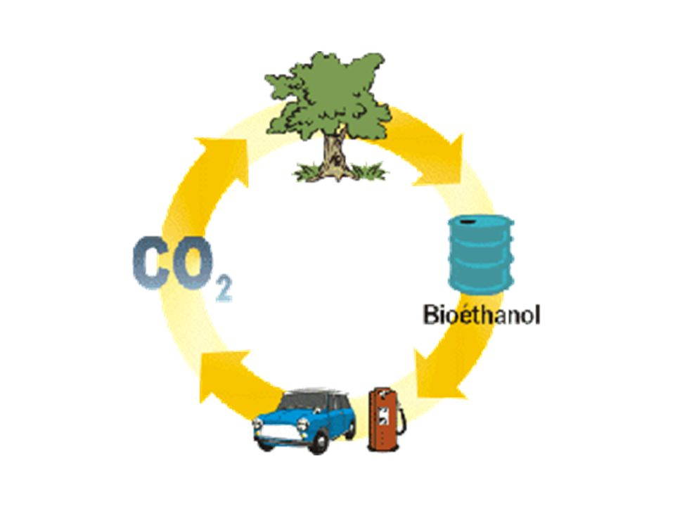 Bioetanol merupakan bahan kimia yang ramah lingkungan (green chemicals, biodegradable, emisi ramah lingkungan) karena dibuat dari bahan-bahan alam yang edible maupun non edible.Hasil pembakaran bioetanol menghasilkan CO 2 yang dapat dimanfaatkan oleh tanaman sehingga bioetanol sangat menjanjikan sebagai bahan bakar masa depan.