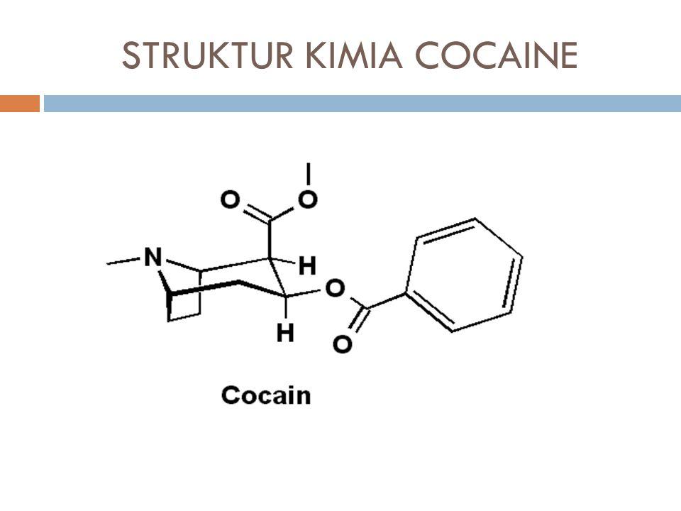 HEROIN  Pemerian : serbuk keputih putihan  Identifikasi : Reaksi marquis 3 tetes larutan sampel atau 2 mg bahan padatan + 2 tetes larutan formaldehid + 10 tetes asam sulfat pekat terbentuk warna Merah muda