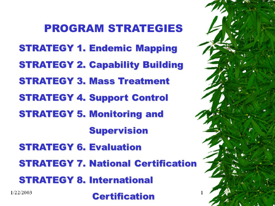 PROGRAM STRATEGIES STRATEGY 1. Endemic Mapping STRATEGY 2. Capability Building STRATEGY 3. Mass Treatment STRATEGY 4. Support Control STRATEGY 5. Moni