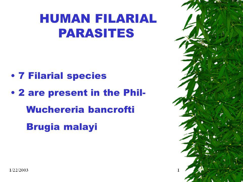 The Elimination of Filariasis Goal: Elimination of Filariasis (Prev.